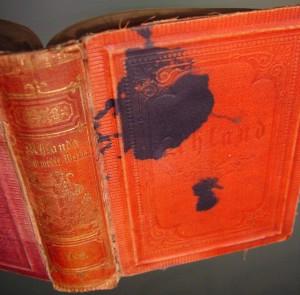 anno 1879